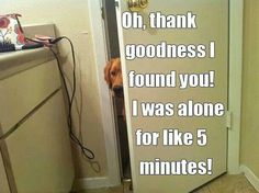 My dog used to do this and my cat still does!