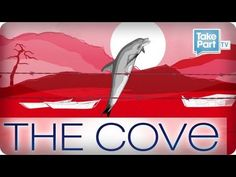 What is The Cove?- Support The Cove Dolphins and Stop Taiji Dolphin Killing