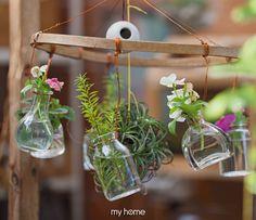 สวนแขวน Mini Plants, Garden Terrarium, Bird Feeders, Cactus, Succulents, Outdoor Decor, Diy, Home Decor, Decoration Home