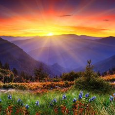 Find the best Beautiful Sunrise Wallpaper on GetWallpapers. We have background pictures for you! Hd Samsung, Sunrise Wallpaper, Hd Wallpaper, Live Wallpapers, Photo Wallpaper, Landscape Arquitecture, Beautiful Places, Beautiful Pictures, Beautiful Flowers