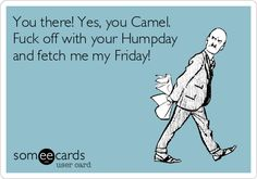 You there! Yes, you Camel. Fuck off with your Humpday and fetch me my Friday! #ecards