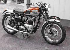Triumph Motorcycles, Triumph Motorbikes, Triumph Scrambler, British Motorcycles, Cool Motorcycles, Vintage Motorcycles, Indian Motorcycles, Triumph Bonneville, Motorbikes Women