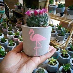 Vasinho lindo com pirâmide da @concre.store 😍 . . . . . . #vasodecimento #vasodeconcreto #vasinhos #cactos #suculentas #cactosesuculentas… Painted Plant Pots, Painted Flower Pots, Concrete Pots, Concrete Crafts, Pots D'argile, Planter Pots, Decorated Flower Pots, Flower Pot Crafts, House Plants Decor
