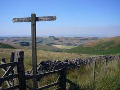 Northumberland's English-Scottish border on the Cheviot Hills (Northumberland National Park)