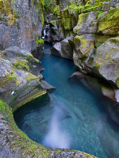 Glacier National Park, Montana... Avalanche creek