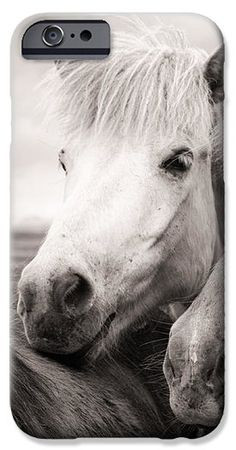 iPhone 6 Case Icelandic horse in Iceland black and white / sepia, friendly and happy animal iPhone6 Cases - also available for iPhone 4 / 5 / 5s and Samsung Galaxy. (c) Matthias Hauser hauserfoto.com