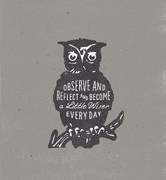 Observe and Reflect and Become a Little Wiser Every Day