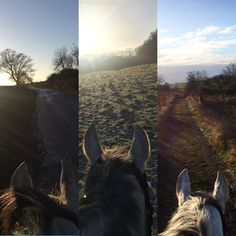 WOW! Don't they say time flies when you're having fun... Well, we've been having lots of fun & have missed a few posts out during December as a result!! | Team Tunnah Eventing