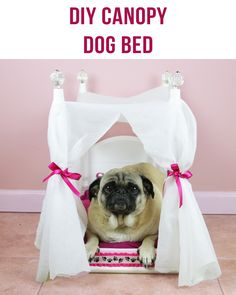 58 best nifty gift ideas images on pinterest cool ideas do it diy dog bed makeadogsday solutioingenieria Choice Image