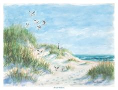 Beach Posters by Ronald Williams at AllPosters.com