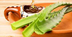 Como muchos sabemos, el Aloe vera es una hierba muy popular que suele ser utilizada como remedio casero natural desde hace siglos con el objetivo de tratar cortes, quemaduras y aprovechar sus efectos laxantes. Las hojas del Aloe Vera (o sábila) son gruesas, carnosas y contienen gel y látex, conocidos por sus poderosos beneficios medicinales. El Aloe vera se encuentra disponible en forma de cápsulas, gel, jugo, y tabletas y se suele utilizar como ingrediente en productos cosméticos y…