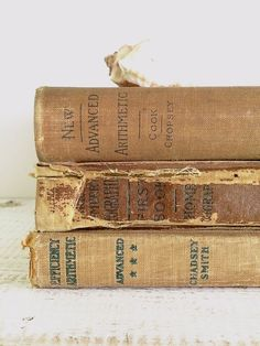 Rustic Decorative Books by beachbabyblues