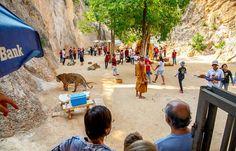 السوق العائم ونهر كواى ومعبد النمر,Floating Market,River Kwai, Tiger Templel