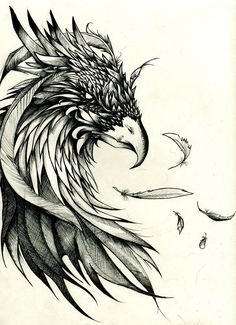 crow tattoo design, but make phoenix instead Tattoo Drawings, Body Art Tattoos, Sleeve Tattoos, Cool Tattoos, Tatoos, Wing Tattoos, Tattoos Skull, Feather Tattoos, Animal Tattoos