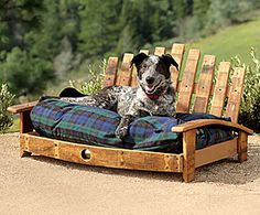 this doggy bed is made from an old wooden barrel, but I think it would work with pallets as well.