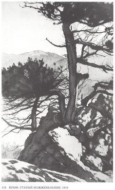 Ivan Bilibin - Crimea. Old juniper, 1918