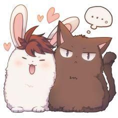 iwaizumi, oikawa, rabbit, cat, https://twitter.com/yamarutter/status/625501761717972996/photo/1