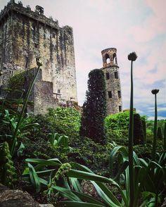 Flashback to Blarney Castle near Cork, Ireland, during a Princess Cruise excursion last May. Have you kissed the stone? #blarneycastle #castle #cork #ireland #cruise #princesscruises #royalprincess #excursion #tour #blarneystone #travel #wanderlust #flashbackfriday #flashback