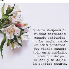 Famous Quotes, Best Quotes, Love Quotes, Funny Quotes, Motivational Phrases, Inspirational Quotes, Funny Phrases, Pretty Quotes, Spanish Quotes