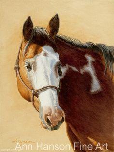 """The Look"" by Ann Hanson Oil ~ 8"" x 6"" Beautiful horse art. Paint horse."