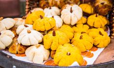 #CountdowntoChristmas - Recipes - @JessieDIY's Thankful Pumpkin Dinner Rolls | Hallmark Channel