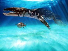 leipleurodon and ichthyosaur