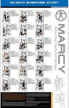 18 Best Weight Machine Workouts Images Exercise Chart Gym Workout