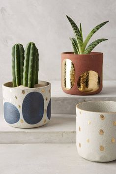 for your friday getting ready for my weekend projects and lots of gardening. sharing my favorite garden pot and planter finds today on — what would you want to plant in them? Cacti And Succulents, Potted Plants, Cactus Plants, Indoor Plants, Pots For Plants, Succulent Planters, Faux Plants, Fleurs Diy, Decoration Plante