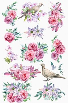 Flower and bird Clipart. Watercolor by Gringoann on Printable Stickers, Planner Stickers, Bird Clipart, Clipart Vintage, Decoupage Printables, Free Printables, Homemade Stickers, Aesthetic Stickers, Decoupage Paper