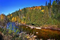 Autumn Landscape, Fall, River