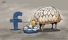 your brain on FB