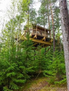 Norwegian Treehouse - Pete Nelson - Treehouse Masters Season 9
