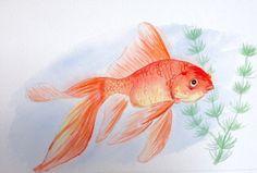Goldfish Original Watercolor Goldfish Art by ColorOfChlorophyll