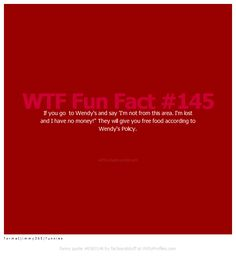 WTF Fun Fact #145 If you go to Wendys and say Im not from this area. Im lost and I have no money! They will give you free food according to Wendys Policy. wtf-fun-facts.tumblr.com f o r m a t j i m m y 3 6 5 | f u n n i e s - Witty Profiles Quote 6583146 http://wittyprofiles.com/q/6583146