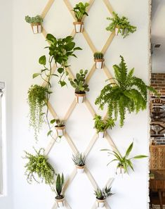 Have a green thumb but not a ton of room? Try a hanging wall of planters to utilize vertical space in your small place! #GardenWall