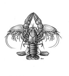 CRAW-DE-LIS: The essence of New Orleans cuisine, Crawfish and Shrimps in a familiar fleur-de-lis pose. Especially tasty with grits and gravy. Order a la carte, or as a lagniappe with a serving of Gator Aid.
