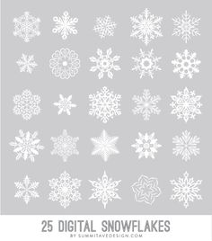 Digital Snowflakes photoshop brush vector & .png by summitavenue