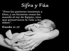 Mujeres valientes de la Biblia - Sifra y Fúa - Beliefnet