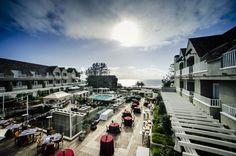 San Diego Corporate Events - Decor Inspiration at L'Auberge Del Mar