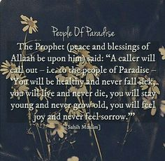The Prophet Muhammad s.a.w.