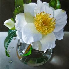 Camellia 6x6, painting by artist M Collier