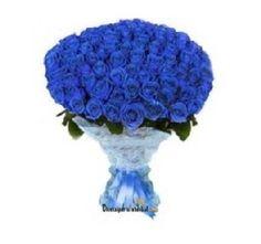 60 adet mavi güller ile hazırlanan mavi gül buketi.