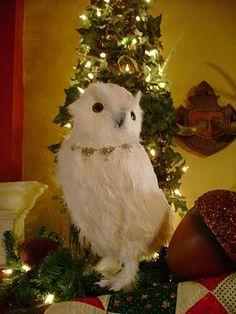 My sweet owl decor
