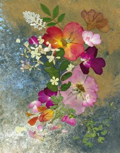 Pressed Flower Art. Shelley Xie