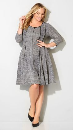 Plus Size Seamed Fit and Flare Dress …