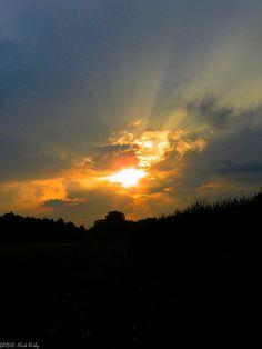 Cornfield sunset 2