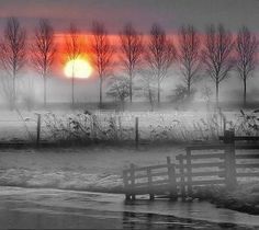 """""""Every moment and every event of every man's life on earth plants something in his soul. Beautiful Moon, Beautiful World, Winter Photography, Nature Photography, I Love Winter, Winter Sunset, Black And White Background, Winter Beauty, Winter Pictures"""