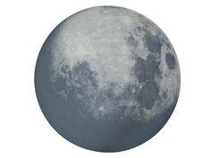 Diesel with Moroso My Moon My Mirror