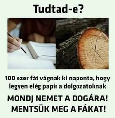 Ebben a storyban olyan vicceket mutatok meg amik egy csapásra feldobt… #humor #Humor #amreading #books #wattpad Funny Memes, Jokes, Crafts For Boys, Super Funny, Haha, Funny Pictures, Humor, Liquor, Chistes