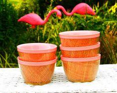 Vintage Raffiaware Pink Plastic Bowls Ice Cream Bowls